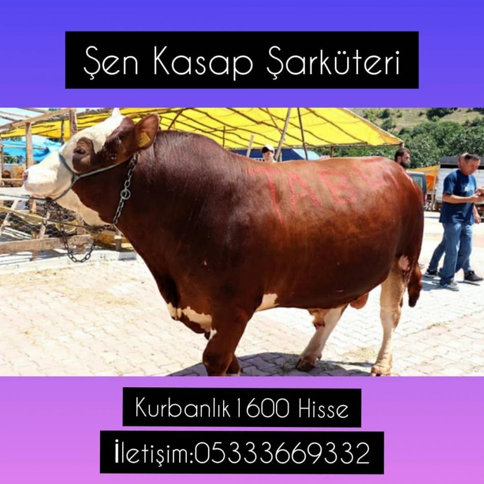 2021/06/1623397360_197522130_2902235030027159_6407383509799718078_n.jpg