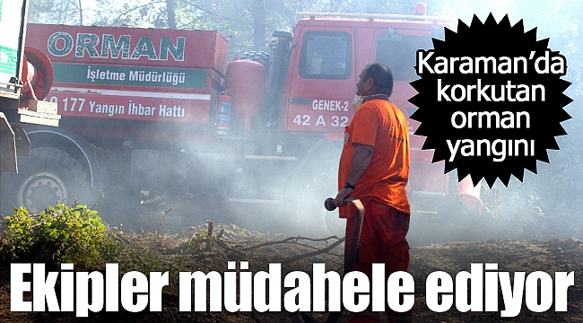 Karaman'da korkutan orman yangını